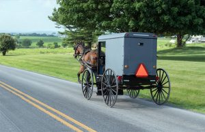 Horse & buggy going down a Lancaster PA road